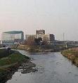 新河岸川水系水環境連絡会